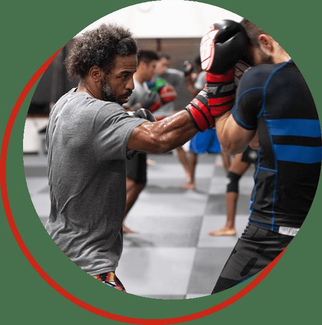 boxers training