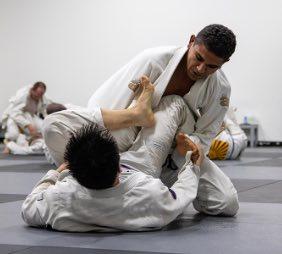Jiu-Jitsu fighters